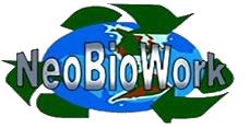 NeoBioWork – Segurança do Trabalho e Gestão Ambiental